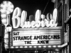 01-strange-americans-bluebird-1