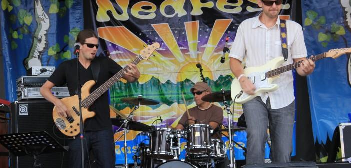 Nedfest 2012