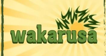 wakarusa-2013-e1358444924538