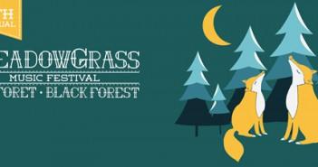 17_FG_Meadowgrass