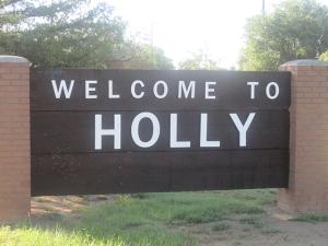 Holly Bluegrass