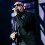 04-Pitbull-MTPhoto11