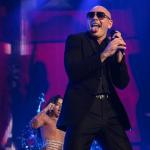 04-Pitbull-MTPhoto15