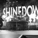 03-Shinedown-MTPhoto07