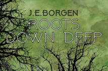 J.E. Borgen album review marquee magazine