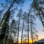 Telluride 2017 Part 1-11