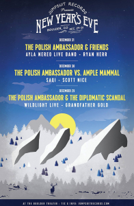 polish-ambassador-new-years-eve-marquee-magazine