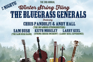 winter-string-fling-festival-marquee-magazine
