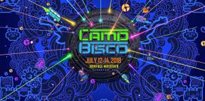 Camp Bisco festival marquee magazine