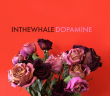 in the whale album review marquee magazine