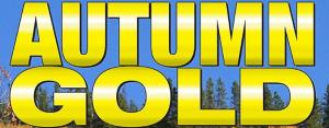 autumn gold festival marquee magazine