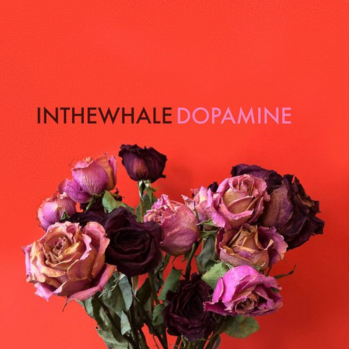 in-the-whale-colorado-top-album-2018-marquee-magazine