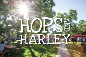 hops-and-harley-festival-marquee-magazine